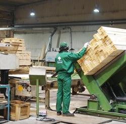 Niesamowite Polski producent pelletu drzewnego wysokiej jakości - Stelmet EI81